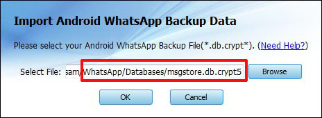Read Messages Android WhatsApp Backup Crypt File