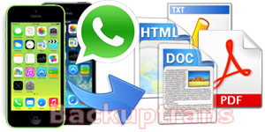 Export WhatsApp Messages from iPhone to Text, Word, HTML, PDF File