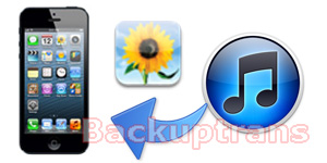 Recover lost iPhone Photos from iTunes Backup in Clicks